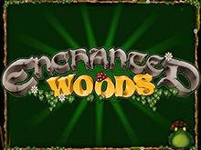 Азартный слот Enchanted Woods от Microgaming